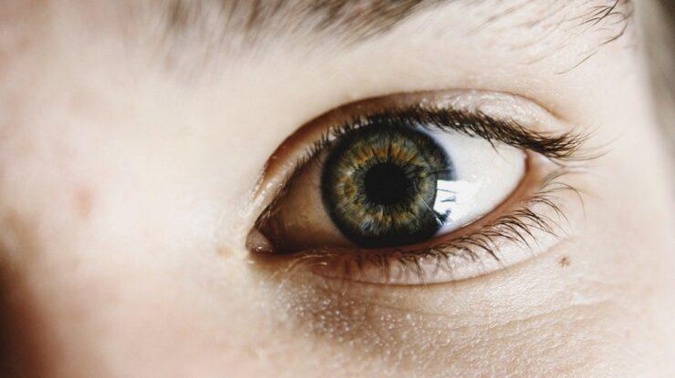 olhos no verão