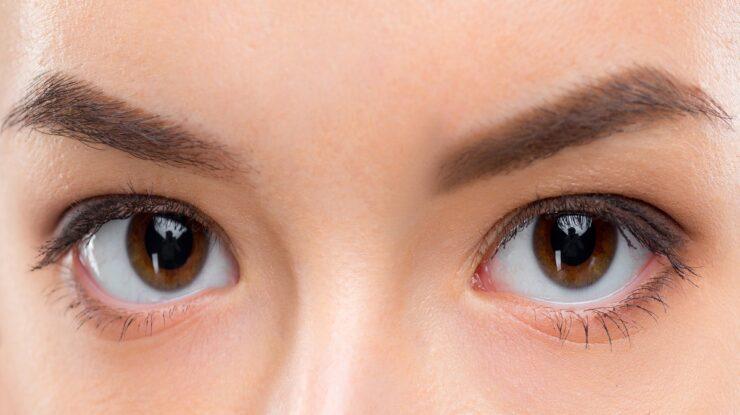 lentes de contato 2021