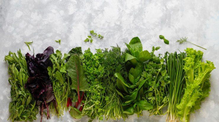 folhas e verduras