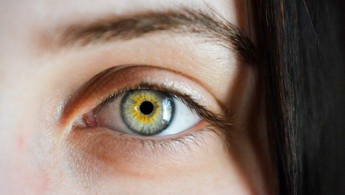 Lei da visão monocular
